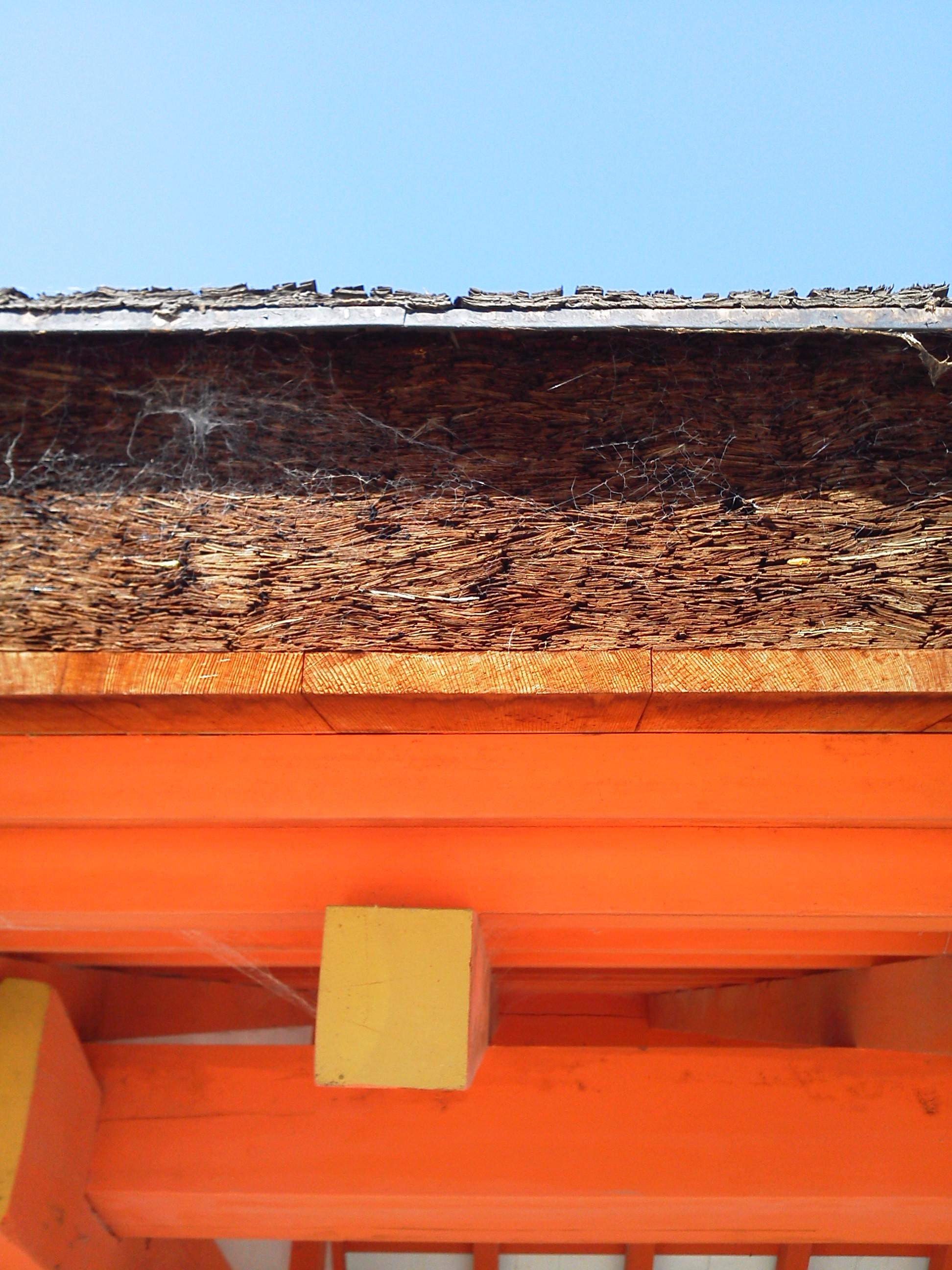 厳島神社 の社殿の茅葺のアップ
