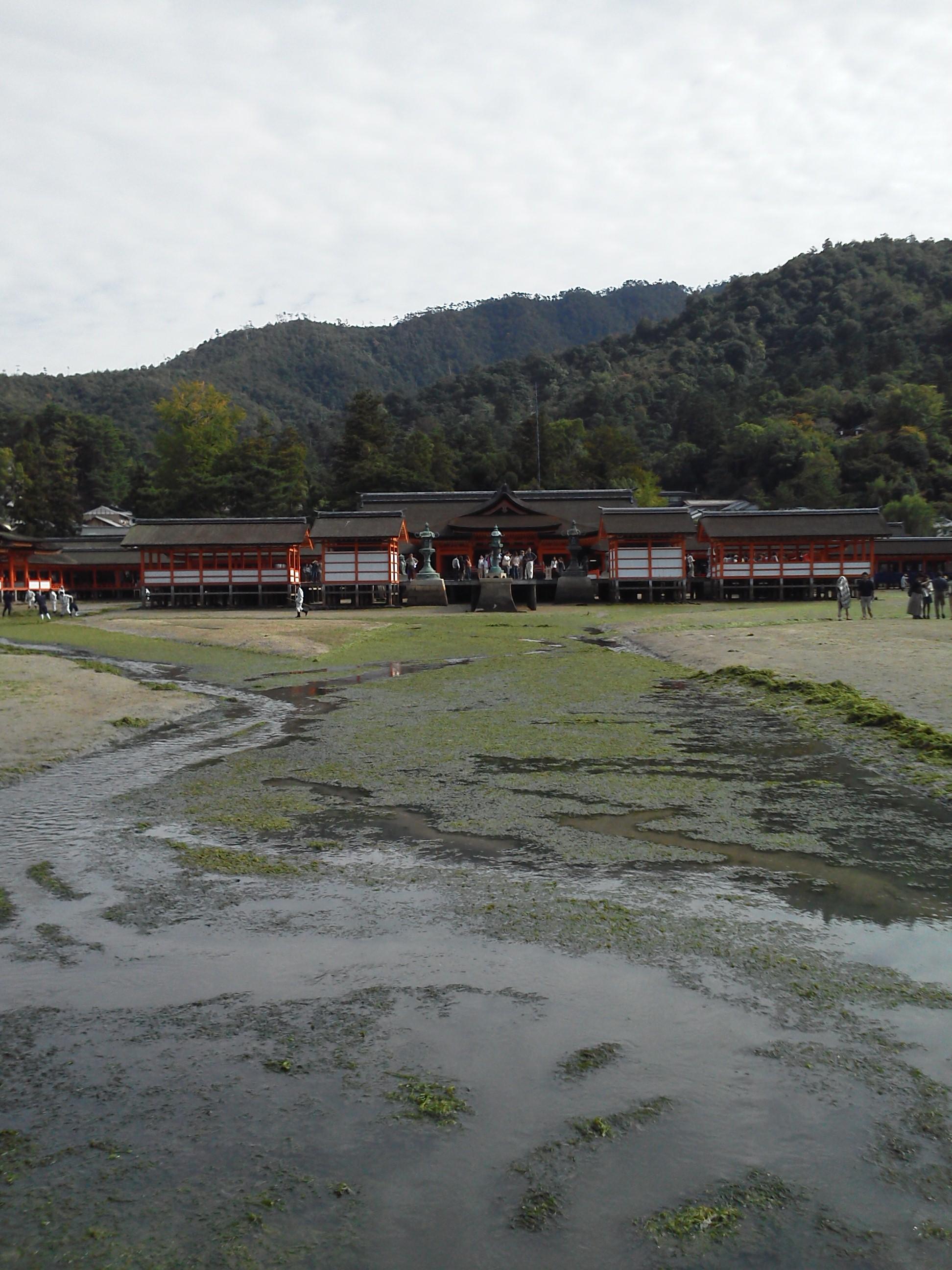 厳島神社の干潮 社殿