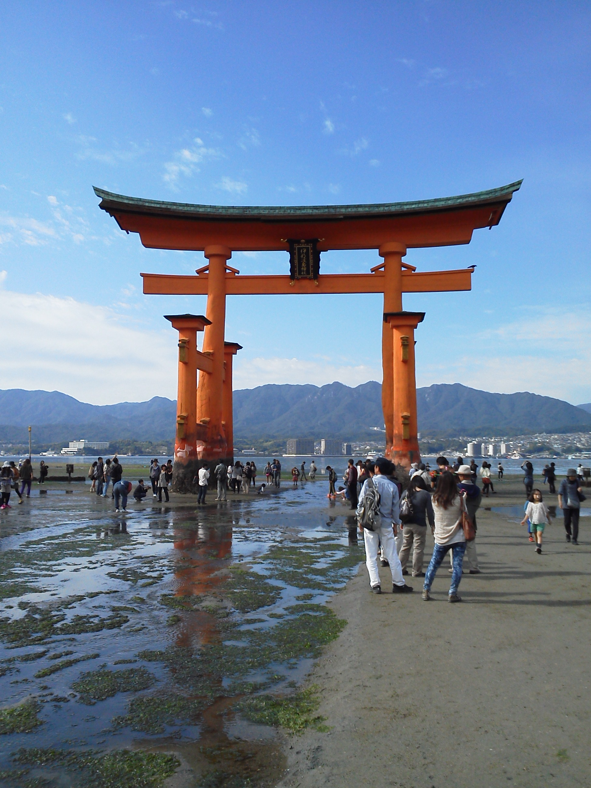 厳島の画像 p1_18