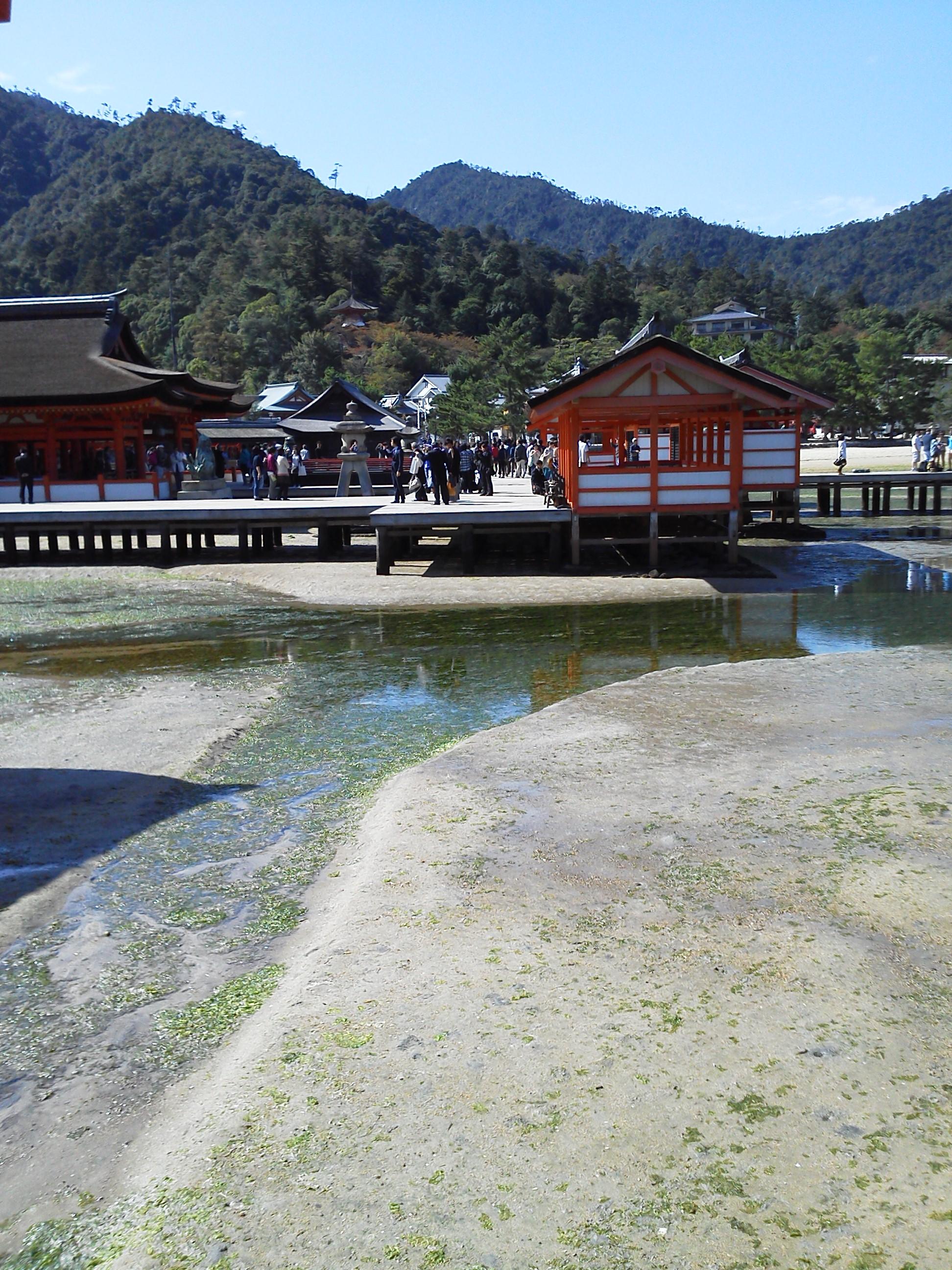 宮島の厳島神社の拝殿